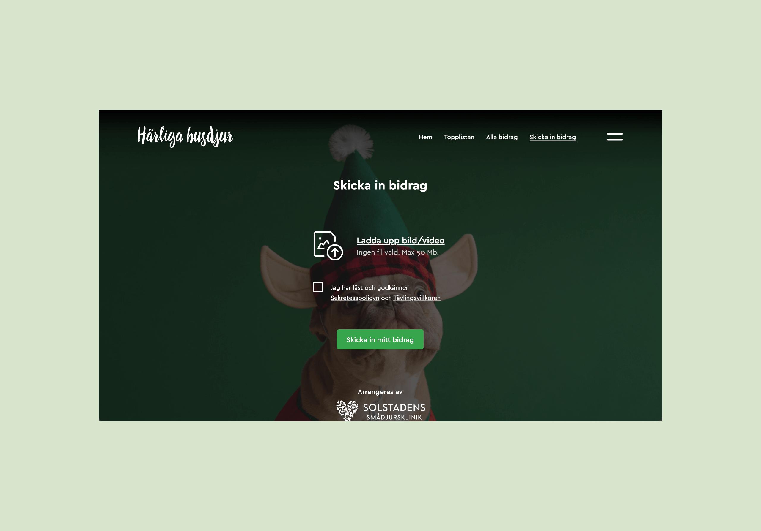 harligahusdjur-desktop3